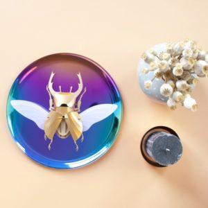 stag beetle diy